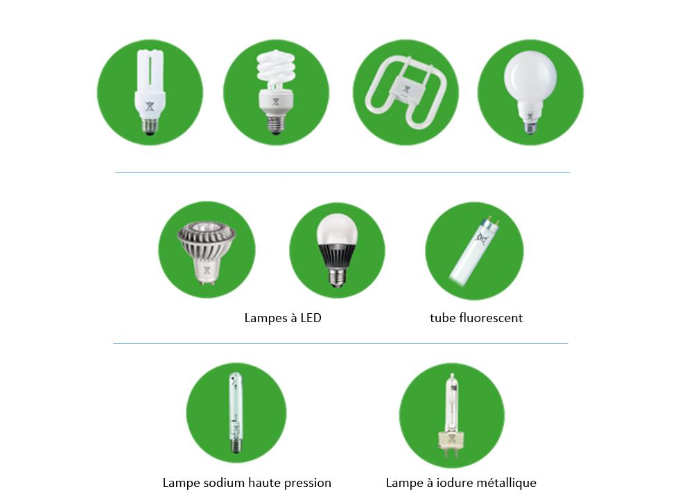 liste lampes fluo-compactes